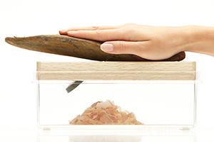 鰹節を楽しく削れるスマートな削り器:透明だから見えて楽しい